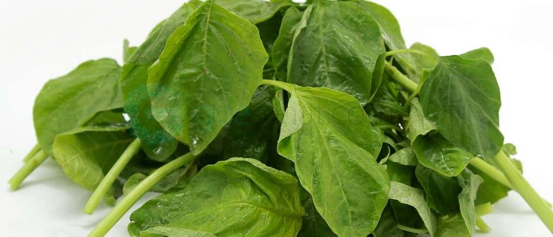 Makanan Yang Tidak Boleh Dimakan Penderita Asam Urat