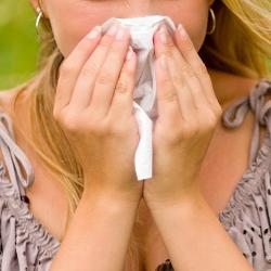 Rhinitis Alergi: Gejala, Pengertian, Diagnosis, dan Pengobatannya