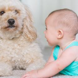 Berat Badan Bayi Turun pada Masa Awal Setelah Lahir, Wajarkah?